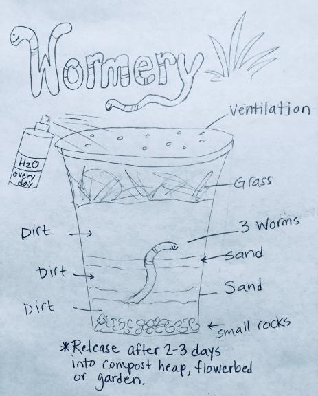 Wormery Cup.jpg